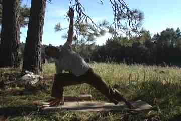 Side Angle Yoga Pose
